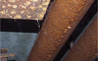 Конденсат на трубах холодной воды. что нужно делать при таком явлении